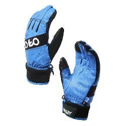Oakley Factory Winter 2 Gloves 2019
