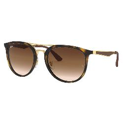 Ray-Ban 4285 Sunglasses 2019