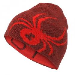 Spyder Mini Reversible Bug Hat (Little Boys')